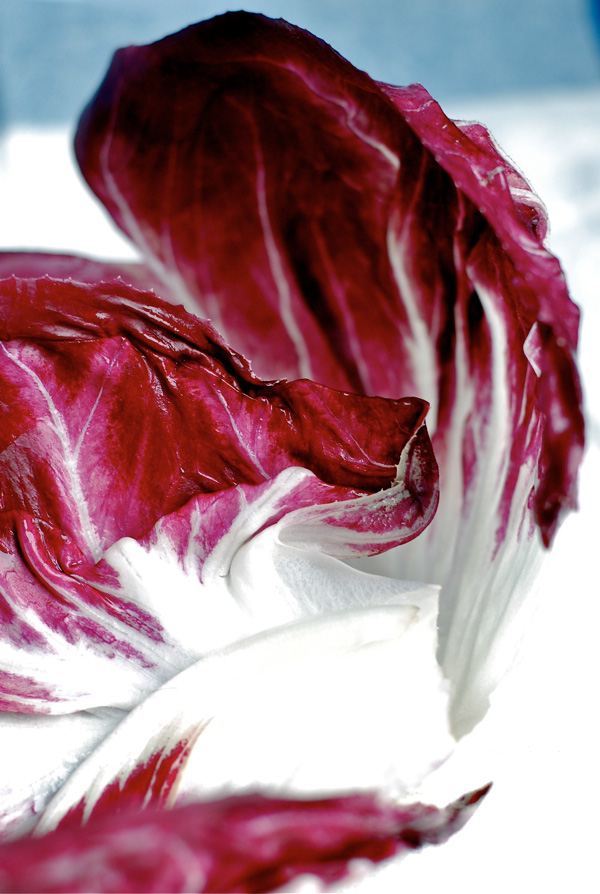 Now in season: radicchio, via brroklynsupper.net; © Brooklyn Supper, all rights reserved