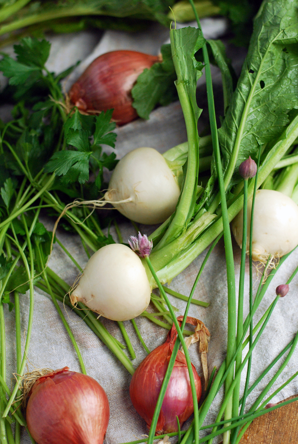 harukei turnip, radish, and bitter greens salad sm 4