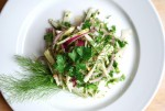 fennel and kohlrabi salad // brooklyn supper