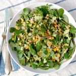 purslane with grilled corn, red onions, and a creamy avocado dressing